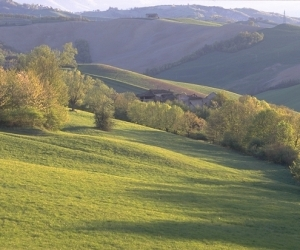 PARCO DEI BOSCHI DI CARREGA